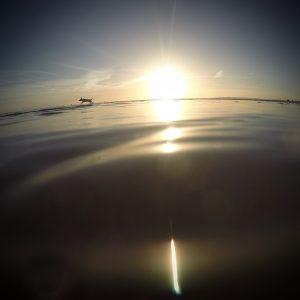 Underwater - Dog on horizon